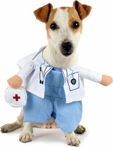 cún làm bác sĩ