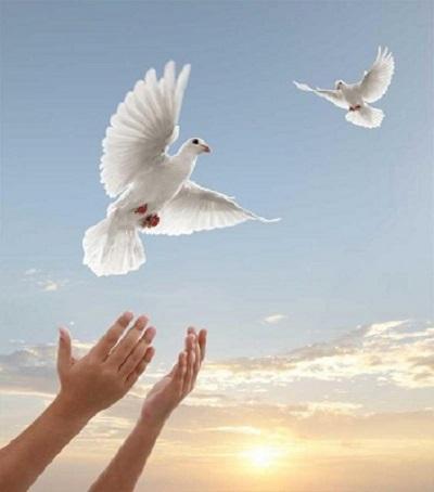 lòng an yên giữa cuộc đời nhiều thử thách (2)