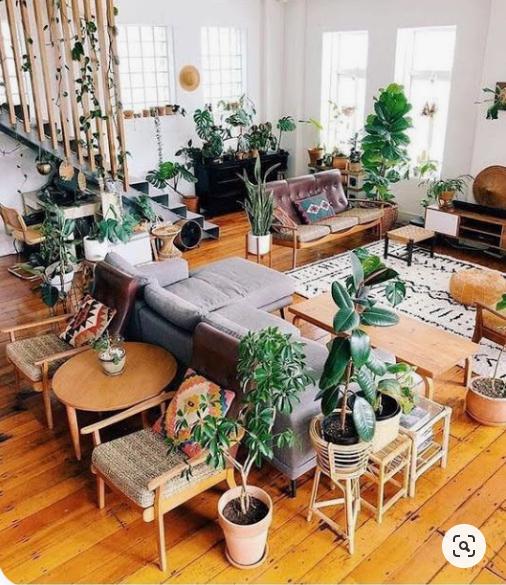 lợi ích cây xanh trong nhà