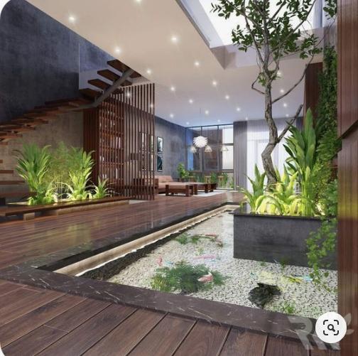 lợi ích cây xanh trong phòng khách