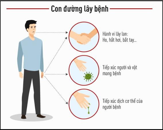 Con đường lây truyền bệnh do virut