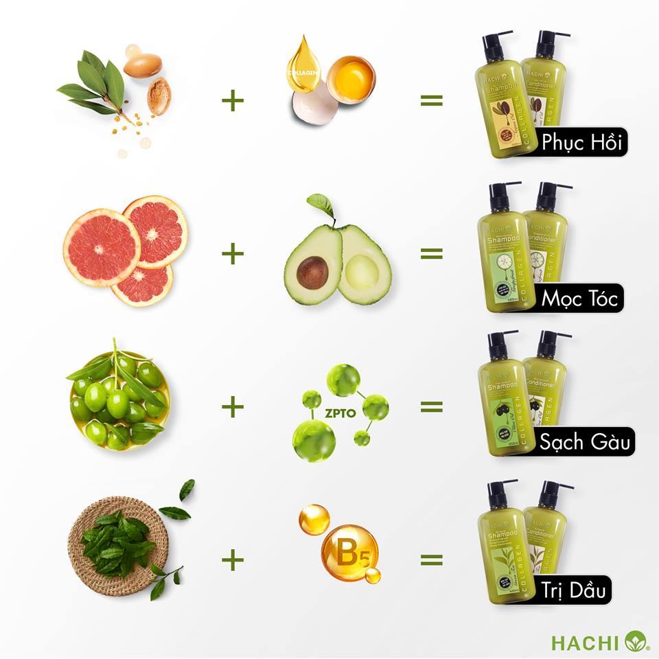 Hachi Shampoo Việt Nam phù hợp với từng nhu cầu người dùng