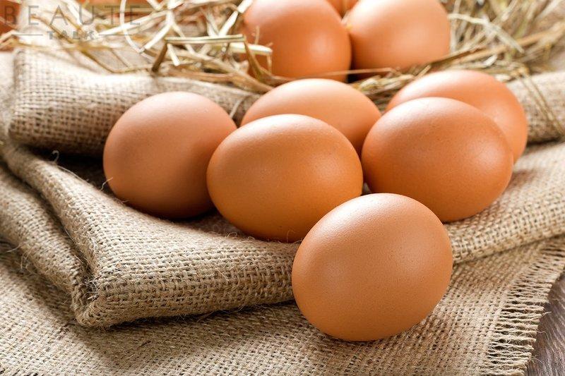 Trứng gà và thịt gà là nguồn bổ sung vitamin B12, lecithin, tyrosine...