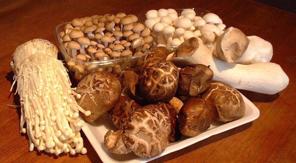 Các món từ nấm