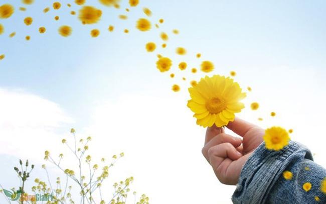 Thay đổi cách sống để cảm thấy hạnh phúc hơn.
