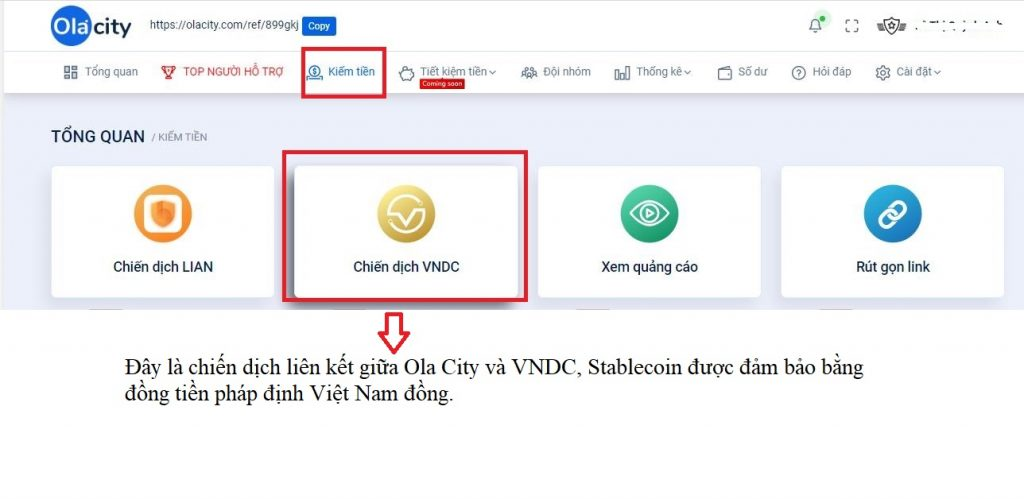 chiến dịch VNCD