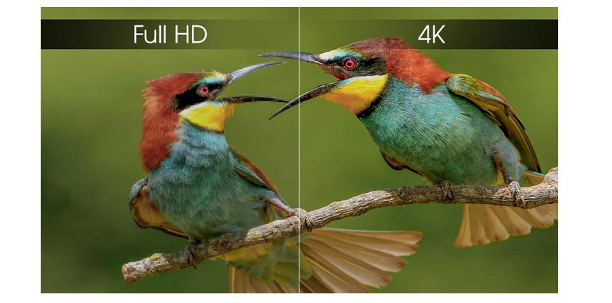 Màu sắc nét chi tiết hơn với Tivi Sony
